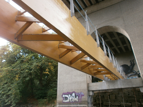 View from below of Glulam Beams and Bracing